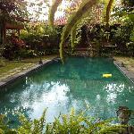 Kampung Kecil Pool