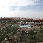 Quiet pool and swim up rooms