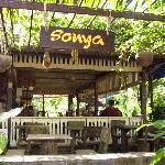 Sonya's restaurant