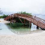 le pont qui traverse la premiere riviere