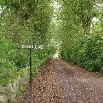The driveway that takes you to Edenshead