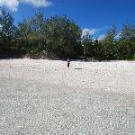 one of Atiu's beaches