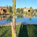 piscine et douirias
