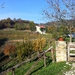 Photo of Agriturismo La Costa - Cascina Scarpata
