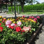 giardino e parcheggio