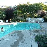 Pool at Rose Garden Inn