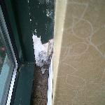 Mold and peeling paint on sill