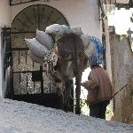 Man and his donkey heading down Taxco steps