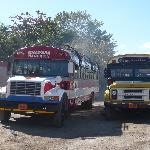 Granada...gare routière.....ses bus..