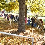 Line for carriage rides