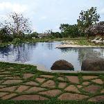 infinity pool area....