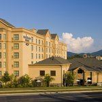 Homewood Suites by Hilton Asheville- Tunnel Road Foto