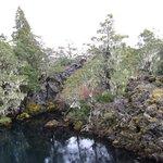 El Escorial y El Bosque de los Enanos