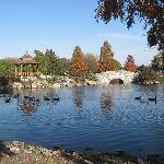 Pond at Fitness Park