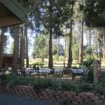 outdoor patio behind historic restaurant under forest cover