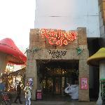 Rainforest Cafe exterior.