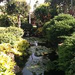 Very lovely pond area....