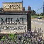Milat Estate Winery Photo