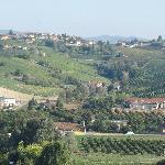Wonderful Wine Country