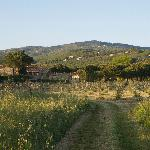 Typical Umbrian Tuscan location