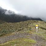 seule au monde, ou presque sur la crête de cette montagne, près du Cotopaxi