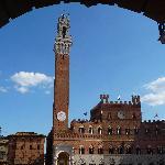 Tuscany ( Siena )