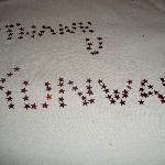 Thank you Kunwar