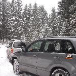 Jeeps' tour