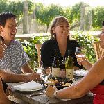 Wine & Sightseeing Tours