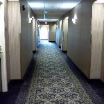 Photo de Comfort Inn & Suites Jupiter