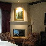 Fireplace in Room