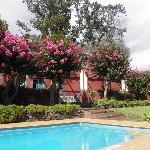 l'un des 2 piscines