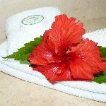 Detalles de flores en el baño