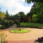 Photo de Shamrock Garden B & B