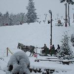a sleigh ride