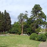 Vista laterale del Parco posteriore