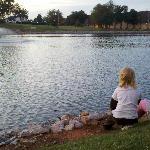 Enjoying the pond.