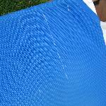 Bird droppings on sun beds