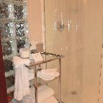 King Suite Bath rm 306 Shower