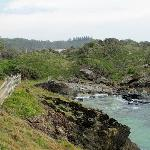 Walk track south of town overlooking beaches