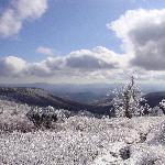Mount Rodgers Ice Storm