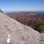 Appalachian Trail Nr Grayson National Park