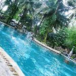 so luscious swimming pool at Country Club