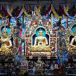 The tibetan buddhist temple