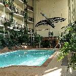 Foto de Hotel L'Oiseliere - Levis