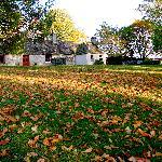 Autumn Dell