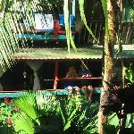 Relaxing and enjoying the Pura Vida At Walaba Hostel & Beach Houses