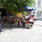 Promenade en charrette