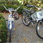 Complimentary Bikes to use