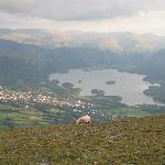View from Latrigg